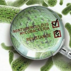 Setkání pracovníků mykobakteriologických laboratoří