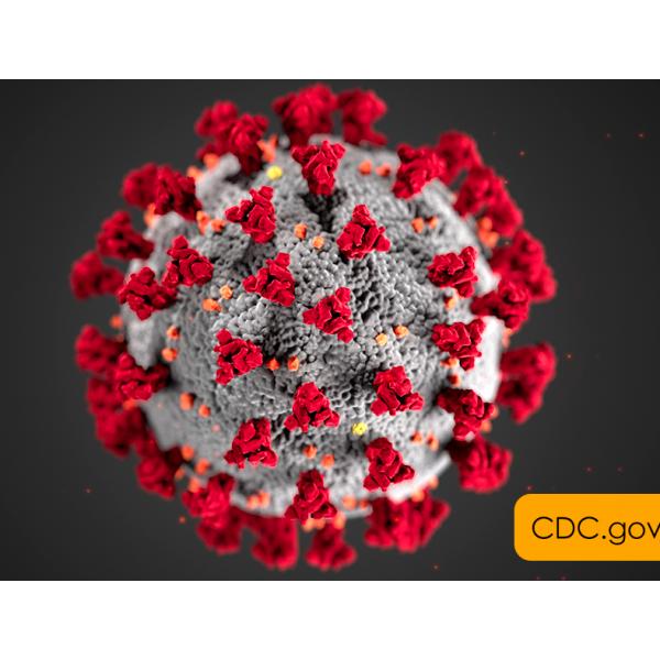 Novel Coronavirus (2019-nCoV) Real Time Multiplex RT – PCR Kit (Detection for 3 Genes) RR-0479-02