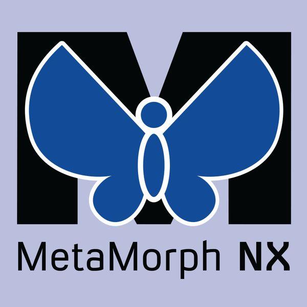 MetaMorph® pro offline analýzu